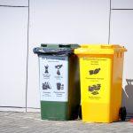 В «Эколайне» пояснили условия бесплатного вывоза перерабатываемого мусора