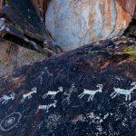 Петроглифы Белого моря и Онежского озера попали в список всемирного наследия ЮНЕСКО