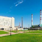 Карбоновую ферму создадут в Вологодской области