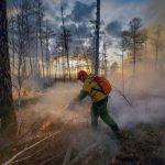 Глава МЧС прибыл в Якутию для руководства тушением лесных пожаров