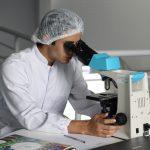 ВОЗ создает новую группу экспертов для выяснения происхождения COVID-19