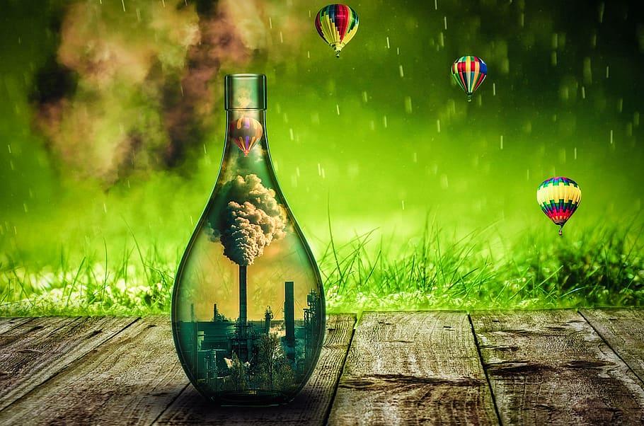 Мировой переход на «зеленую экономику» и роль государственного сектора