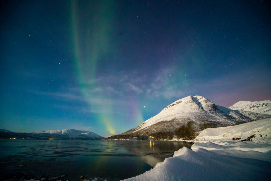 Пластик из сибирских рек загрязняет моря в Арктике