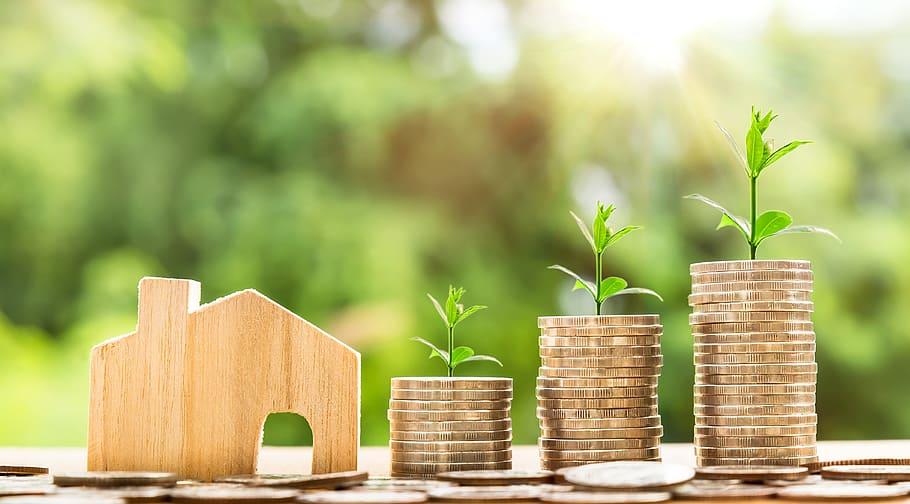 Мировой переход на «зеленую экономику»