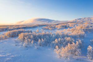 Российская Арктика: фронтир национального освоения