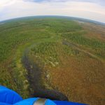Пять регионов СЗФО округа включили в программу «Арктический гектар»