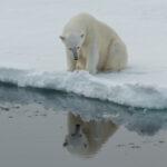 Фонд Горчакова и ПОРА проводят в Салехарде «Арктический диалог»